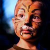 131/365 Tiger Style - © Simpson Brothers Photography