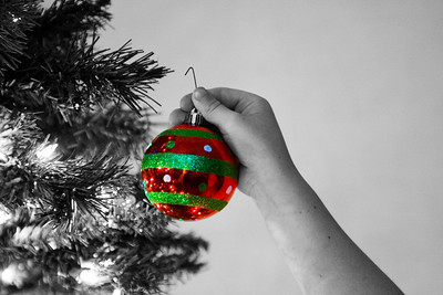 330/365 Ornament - © Simpson Brothers Photography