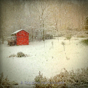 my barn in blizzard card