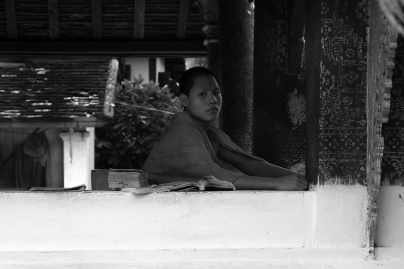 LUANG PRABANG. PORTRAIT OF A STUDYING MONK IN THE TEMPLE. LAOS.