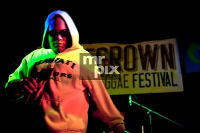 Reggae Festival - Lifestyle