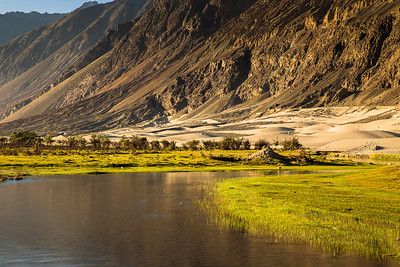 Oasis in the Himalayan desert