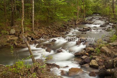 Cub Run near Catherine Furnace in early Spring. George Washington National Forest.
