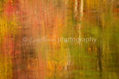 Fall leaves reflect their colors on a placid lake, creating an abstract painting effect.