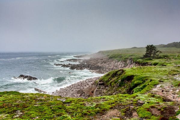 East Coast Trail - Newfoundland