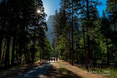 Hikers, Yosemite