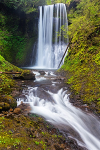 Ecola Falls - Columbia River Gorge
