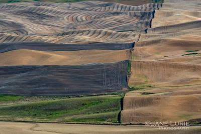 Farmland, The Palouse