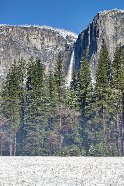 Fresh Snow, Meadow & Yosemite Falls