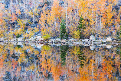 Fall, Mirrored