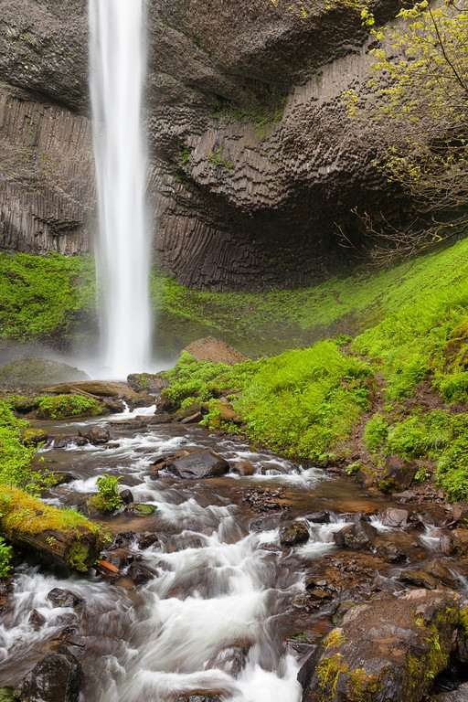Another view of Latourell Falls, this shot was taken while standing in the creek under the footbridge.