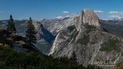 Two Pines and Half Dome, Yosemite