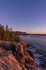 Otter Cliffs at Dawn vertical