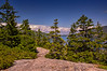 Flying Mountain Loop View of Somes Sound, Acadia National Park, Maine