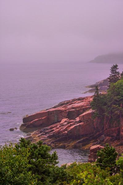 Foggy Park Loop Road View, Acadia National Park, Maine