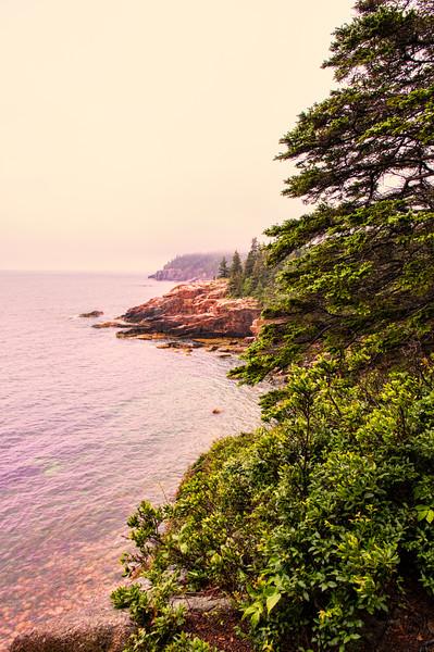 Foggy Park Loop Road View 3, Acadia National Park, Maine