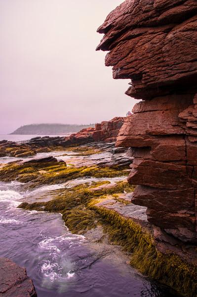 Thunder Hole Rock Detail, Acadia National Park, Maine