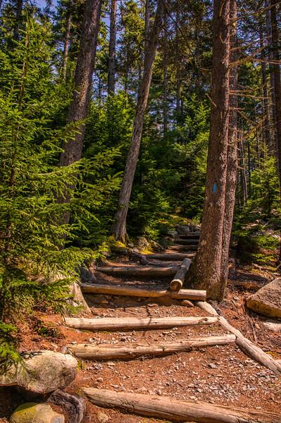 Flying Mountain Loop Trailhead, Acadia National Park, Maine
