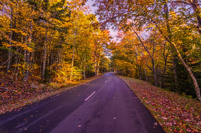 Park Loop Road in Autumn