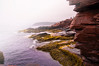 Thunder Hole Rock Detail 2, Acadia National Park, Maine