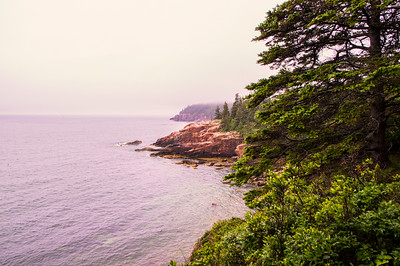 Foggy Park Loop Road View 4, Acadia National Park, Maine