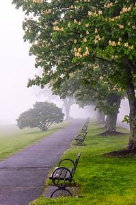 Foggy East End Promenade, Portland, Maine