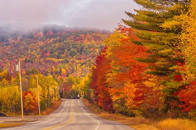 Western Maine Foliage