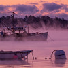 Misty January Dawn, Falmouth, Maine
