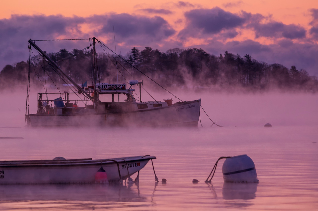 Misty January Dawn, Falmouth, Maine