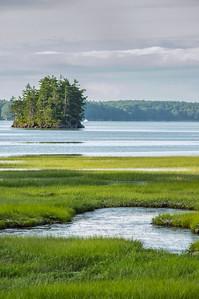 Harpswell Salt Marsh Vertical, Harpswell, Maine