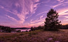 Sunshine Road, Sunset Panorama, Deer Isle, Maine