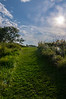 The Path to Bliss, Gilsland Farms Audubon Center, Falmouth, Maine
