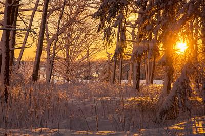 Post Snow Sunrise, Falmouth, Maine