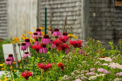 Audubon Community Center Garden, Falmouth, Maine