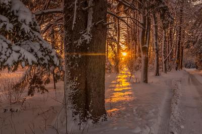 Post Snow Storm Sunrise, Falmouth, Maine 2