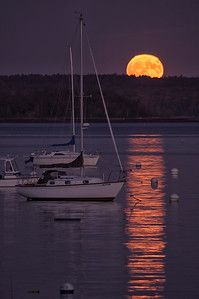 Harvest Moon, Falmouth Town Landing, Maine 3