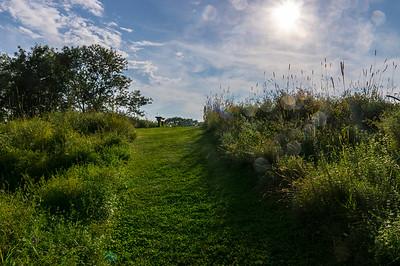 The Path of Least Resistance, Gilsland Farms Audubon, Falmouth, Maine