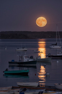 Harvest Moon, Falmouth Town Landing, Maine 2