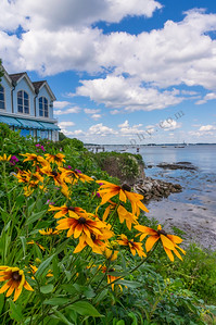 What a View 3, Falmouth, Maine