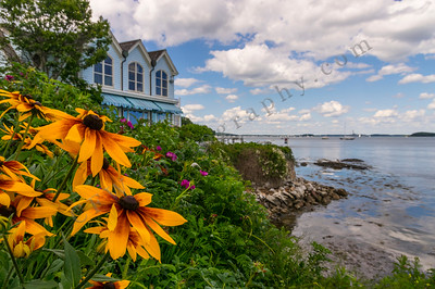 What a View 2, Falmouth, Maine