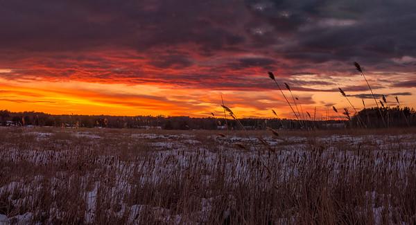 Marsh Grass Sunset 2, Scarborough, Maine