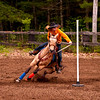 Barrel-Racing Quarter Horse 20x30