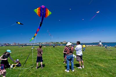 Bug Light Kite Festival 1 20x30