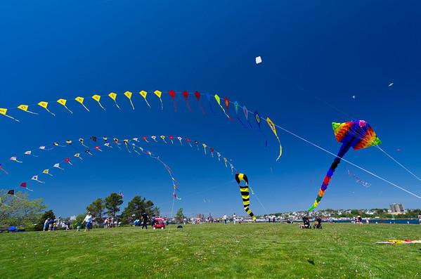 Bug Light Kite Festival 3 20x30