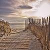 Do You Know the Way?<br /> Ferry Beach Boardwalk path, Scarborough, Maine