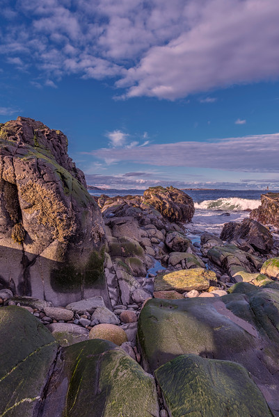 Low Tide Rocks 2, Fort Williams, Cape Elizabeth, Maine