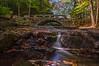 Vaughan Woods, Hallowell, Maine 2