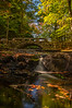 Vaughan Woods, Hallowell, Maine
