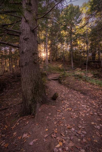 The Cascades Trail 2, Saco, Maine (HDR)