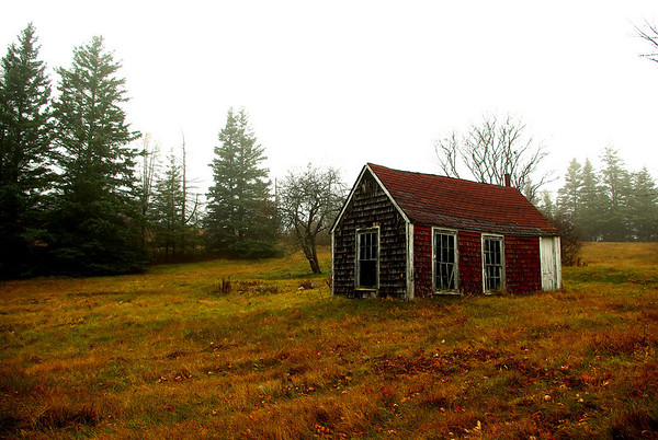 Misty Shack--Deer Isle, ME, Thanksgiving Day, 2007. This tiny shack has a strange history: apparently the men of Deer Isle used to come here to drink together for years.